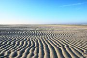 ../galleries/2018.11.17_Norderney_Tag_2/DSC_1492.thumbnail.jpg