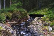 ../galleries/2020.04.04_Wandern_Harz_Bad_Grund/DSC_4769.thumbnail.jpg